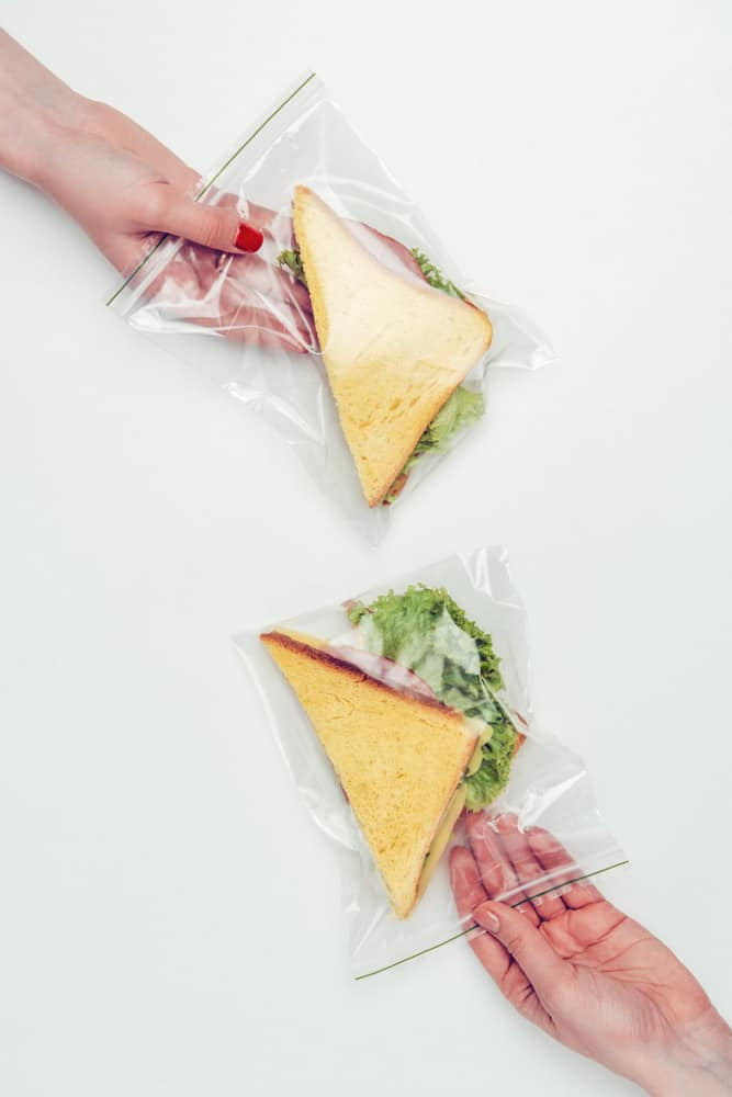 Backpackers Ziplock Bag For Packing Food