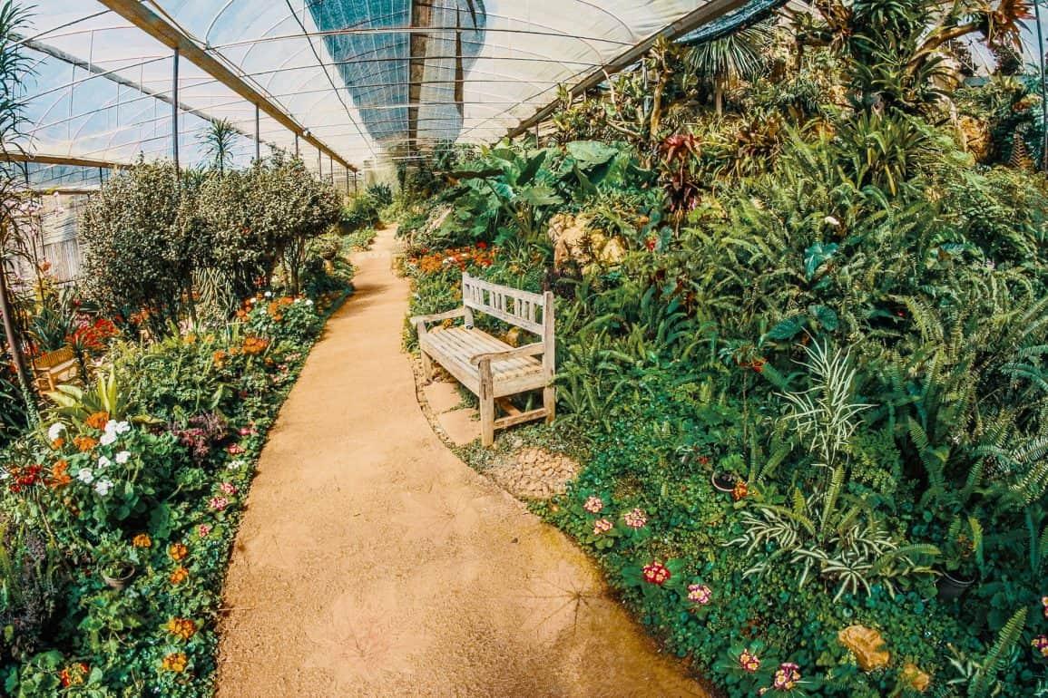 Botanical Gardens in New York