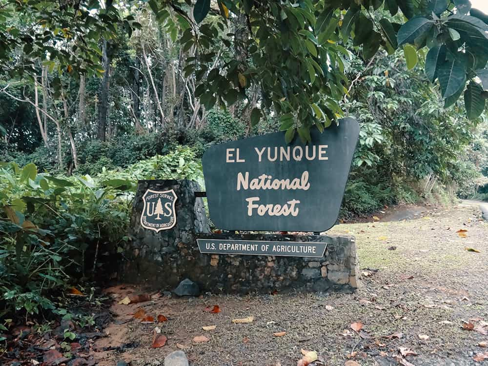 San Juan El Yunque National Forest
