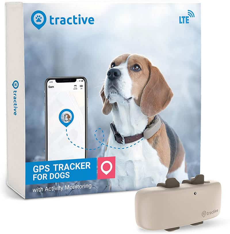 pet travel accesories